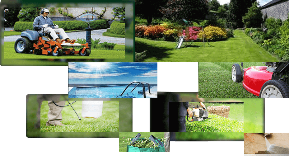 Professional lawn and garden care provider Brisbane
